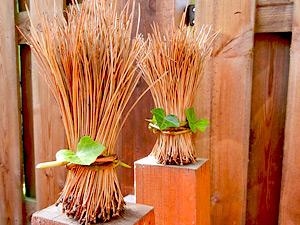 Garten-Deko & Basteln mit Naturmaterialien